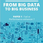 "Big Data white paper: ""From Big Data to Big Busine$$"" – free"